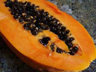 Papaya for parasitic infection