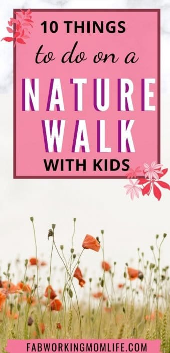 10 things to do on a nature walk with kids