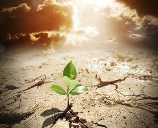 Rola duchowości i wiary w procesie trzeźwienia
