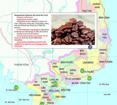 ベトナム知的財産庁(NOIP)t地理的表示(geographical indications)