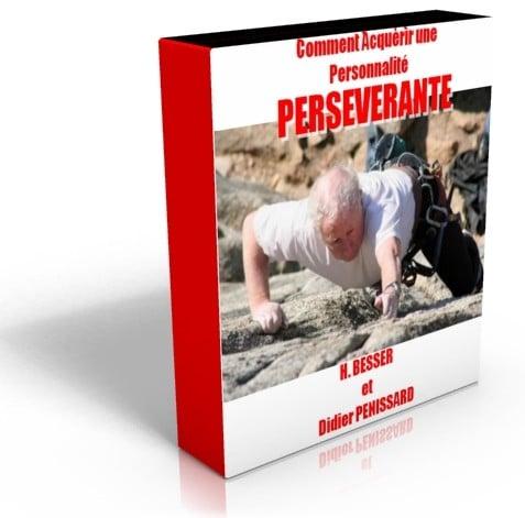 Programme de développement personnel ; Comment Acquérir Une Personnalité Persévéran