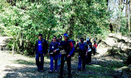 Jungle walk in Chopta- the diverse forest of chopta uttarakhand.