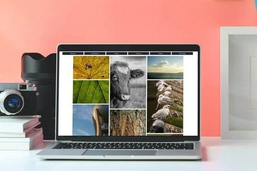 gratis stockfoto's downloaden op libreshot. Rechentvrije foto's gratis downloaden