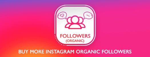 Instagram Organic Followers Dubai