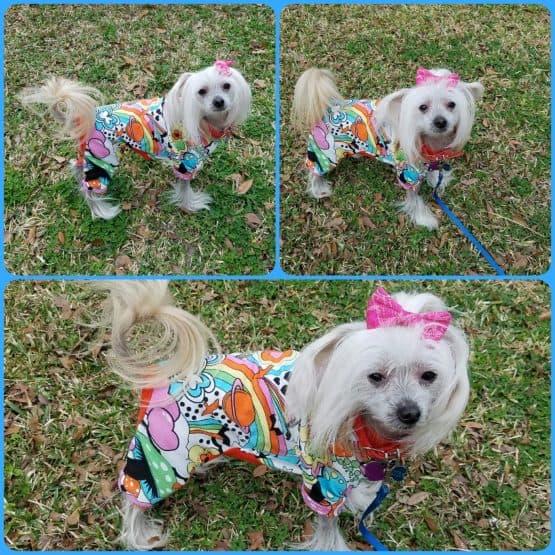 The Tailoress PDF Sewing Patterns - Bella Pyjamas for Dogs PDF Sewing Pattern