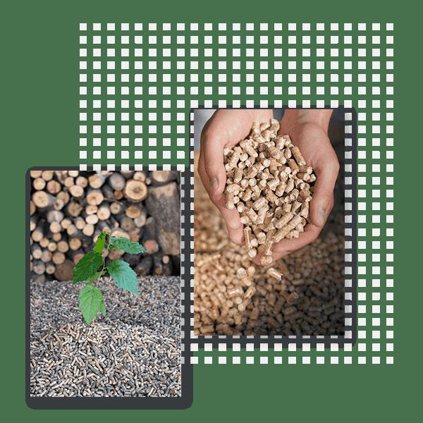 Biomasse et pellets bois