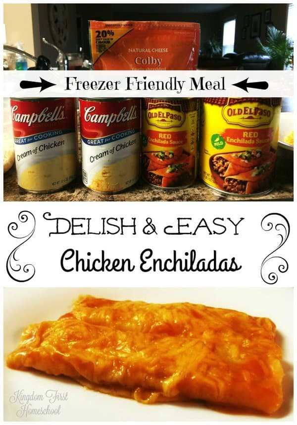 Delish and Easy Chicken Enchiladas a freezer friendly meal