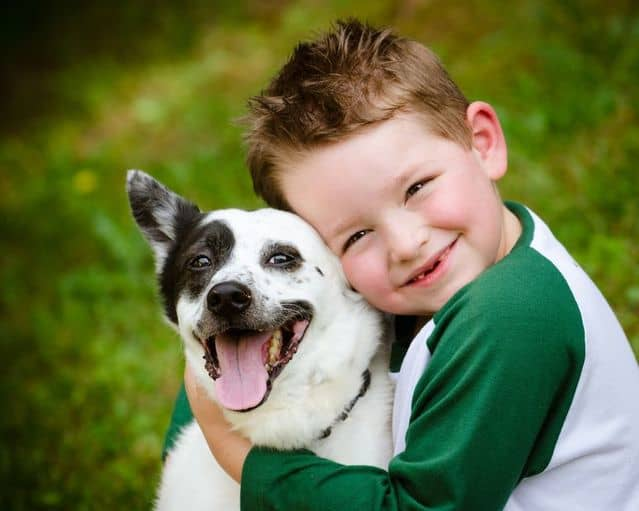 7 Life Lessons You Can Teach Your Children By Getting a Pet 2