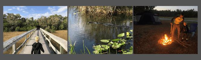 everglades splash image