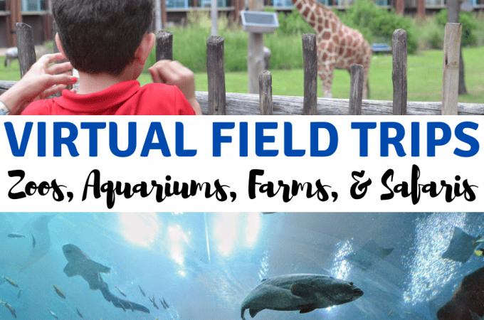 virtual field trips zoos aquariums farms safaris