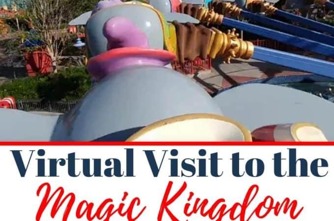 virtual visit to the magic kingdom