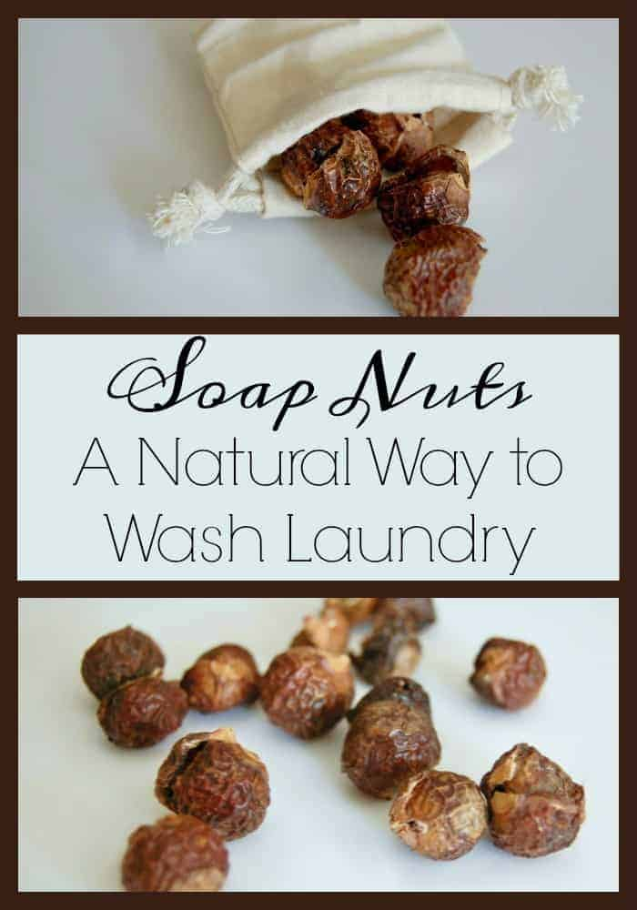 Soap Nuts - A Natural Way to Wash Laundry! Learn how these berries can clean your laundry! #laundry #soapnuts #ecofriendly #greencleaning