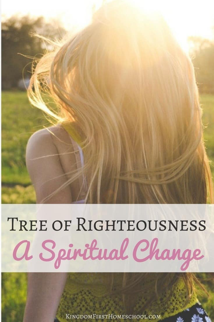 Become a vibrant disciple of Jesus. Be filled with His Spirit, & learn to live in God's presence daily and producing fruit rapidly through spiritual change.
