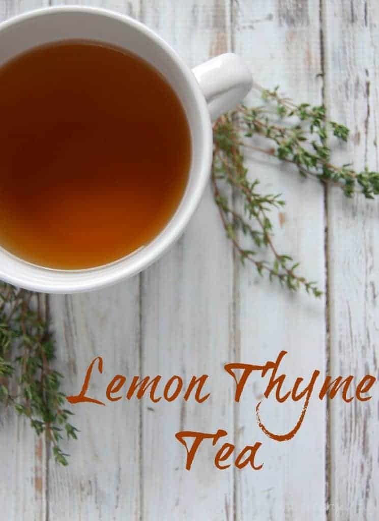 Lemon Thyme Tea - A great tea for coughs, colds, congestion. Safe for adults and kids! #coldremedy #cough #thyme #tea #naturalremedies