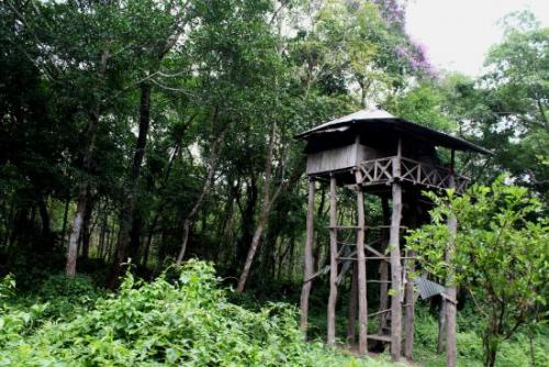 Watch Tower Chilapata