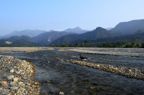 Jayanti river Dooars