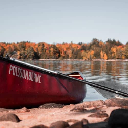 canot poisson blanc parc régional réservoir