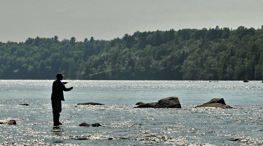 Camping Lac-Saint-Michel offers fishing activities for the whole family