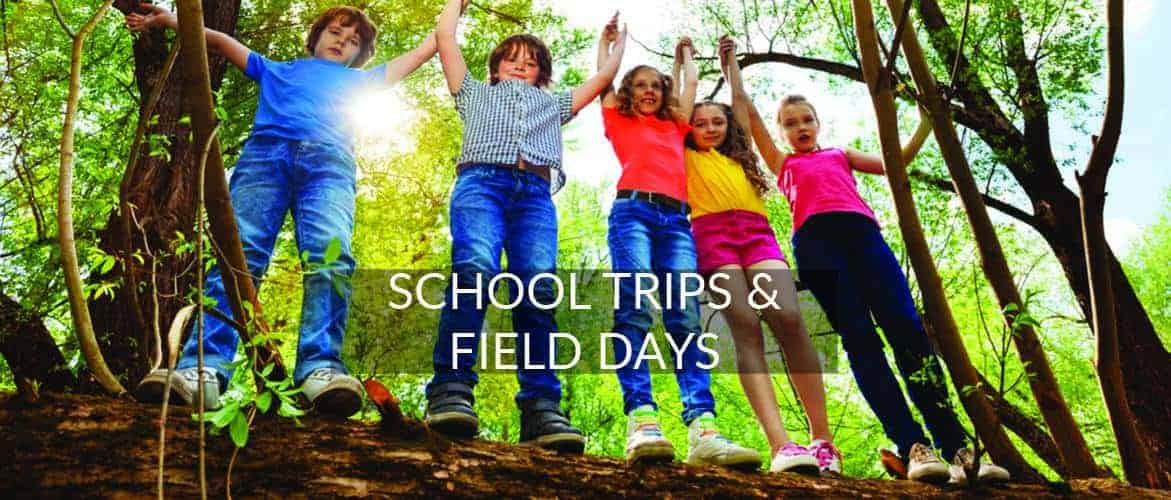 School Trips and Field Days