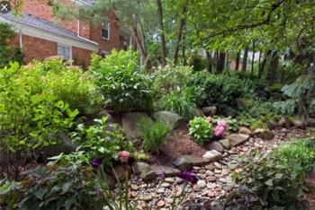 PDH Course - How To Build A Rain Garden