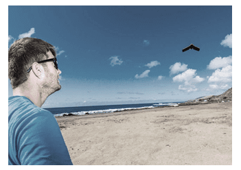Unmanned Aerial Systems in Marine Science and Conservation