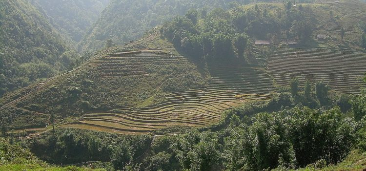 To the ethnic hill tribes in Sapa